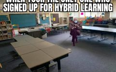 Hybrid Bernie